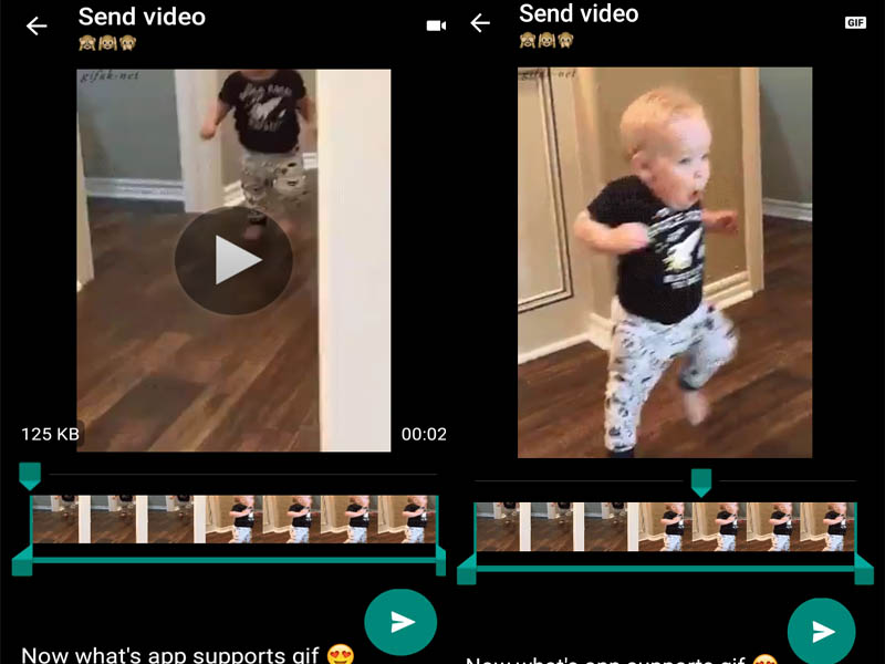 How to Send Video as GIF on WhatsApp